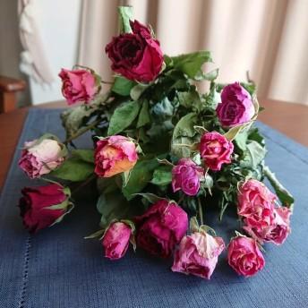 ドライフラワー薔薇15本‼ B140