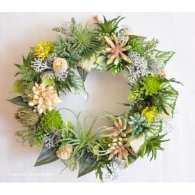 Botanical Wreath:多肉植物とチスパ