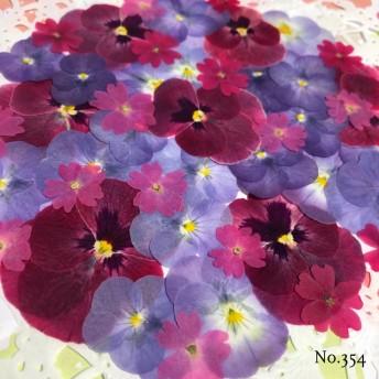 new 送料無料! 人気のビオラとバーベナの押し花セット