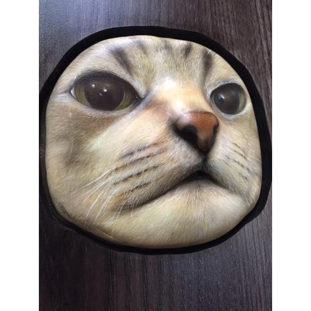 ペット猫ちゃん3Dリアル 立体) 木製オーダー置物(額
