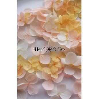 増量☆70枚☆再販 ☆プリザーブドフラワー人気のアナベル☆紫陽花花弁60枚+10枚☆ ホワイト、ピーチ、オレンジセット