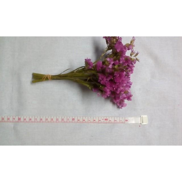ピンクのスターチス☆ドライフラワー15cm