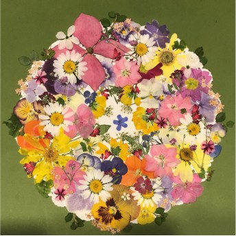 押し花☆チドリ草、ゲラニウム、クリサンセマム、ビオラ他小花たくさん花材