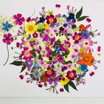 押し花☆ミニバラ、フロックス他小花たくさん 花材