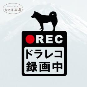 柴犬の黒シルエットステッカードライブレコーダー録画中