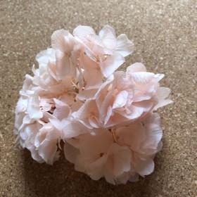 プリザーブドフラワー 紫陽花 プレシャスピンク 3g