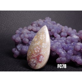 ★ハイグレード★珊瑚の化石 フォッシルコーラル ルース カボション 37mm FC78