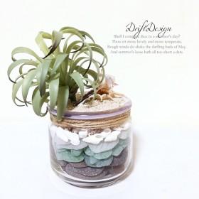 造花と貝殻のお洒落なシーグラスの瓶詰め ハワイアン 西海岸