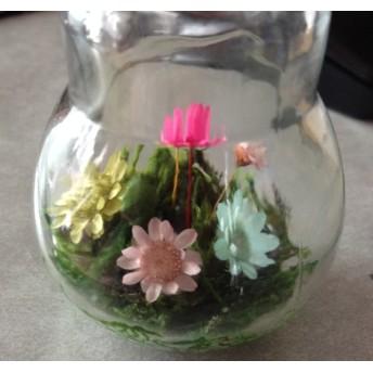 送料無料‼️電球ボトルフラワー 湿度花(湿度で開閉するドライフラワー)