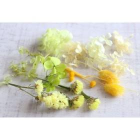 黄色の花材 (ハーバリウム・ボタニカルキャンドル用素材)