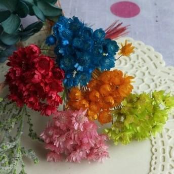 秋色♪マルセラの花束