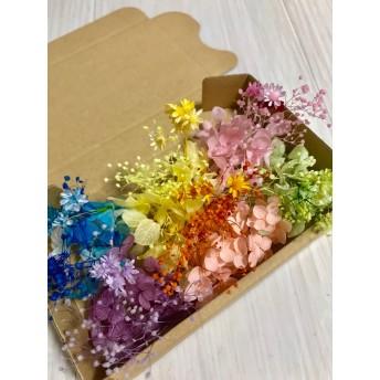 6色セット小分け花材ハーバリウムボールペンに♪レジン素材