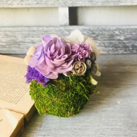 苔玉アレンジメント ギフト結婚祝 お誕生祝 ウェディング モスグリーン お祝い 夏のギフト お中元 父の日贈り物