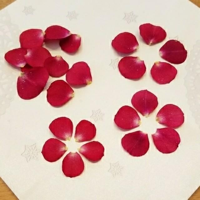 【花材】 小さい薔薇の花びら 立体ドライフラワー