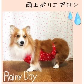 コーギー(♀) 雨上がりエプロン*星RED 女の子