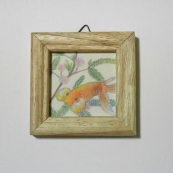 ミニ原画「金魚とオジギソウ」