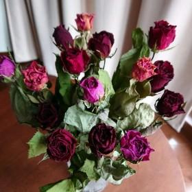 ドライフラワー薔薇15本‼ B134