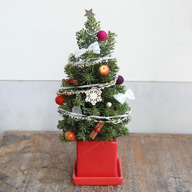 自分で飾ろう ミニクリスマスツリー