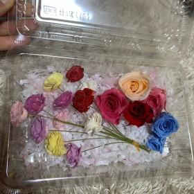 ハーバリウム 花材 薔薇 セット