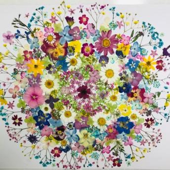 押し花 花材 素材☆かすみ草、ビオラ、アジサイ、アナベル他小花MIXたくさん