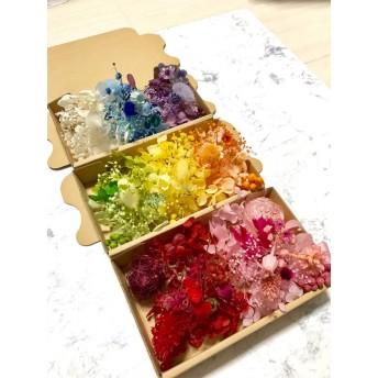 綺麗色8カラー3Box*ハーバリウム 花材ドライフラワー 花材セット