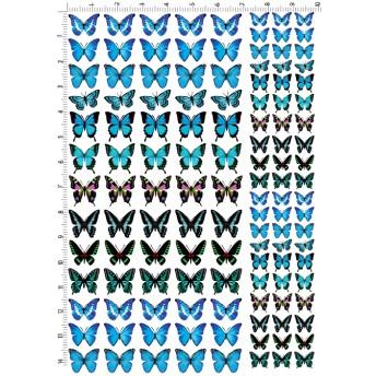 レジン封入シート.MOA .001-03.モルフォとあげは蝶. ハガキサイズ