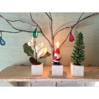 小さな小さなちーさな植木鉢*クリスマス