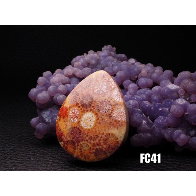 ★ハイグレード★珊瑚の化石 フォッシルコーラル ルース カボション 33mm FC41