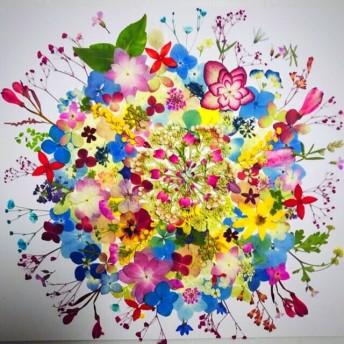 押し花 ☆ ガーベラ、アジサイ、ミモザ、かすみ草他小花たくさん 花材 素材