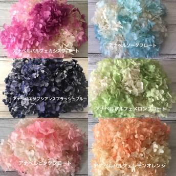 色変え可 ️アナベル小分けセット ️レジンアクセサリー花材プリザーブドフラワー