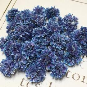 かすみ草 ドライフラワー 混色 fairy gradation blue purple