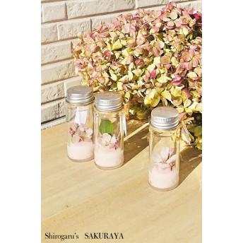 SAKURA …Strawberry Milk ss Bottle