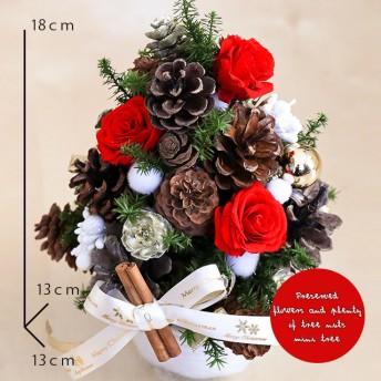 【送料無料・クリアケース付】プリザーブドフラワーと木の実たっぷりクリスマスminiツリーアレンジ