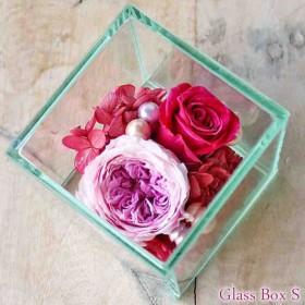 Glass Box S purple