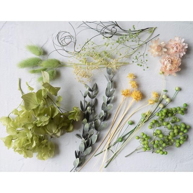 ドライフラワーグリーン系 アロマワックス花材・ハーバリウム花材