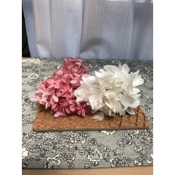 hydrangea ~紫陽花~ 花材