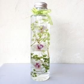 胡蝶蘭のハーバリウム*グリーン