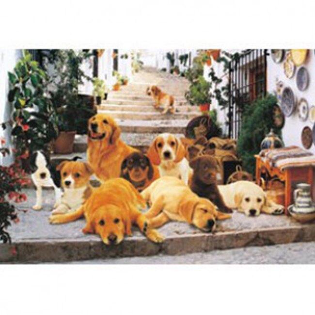 【P2 拼圖】階梯上的小狗們(1000pcs) HM100-240