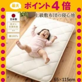 日本製綿100%三層長座布団 65cm 115cm[1D][00]