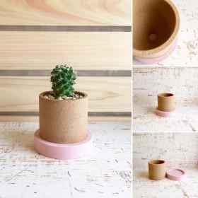 「サボテン鉢 ピンク 小さなサイズ」インテリア雑貨、サボテン鉢