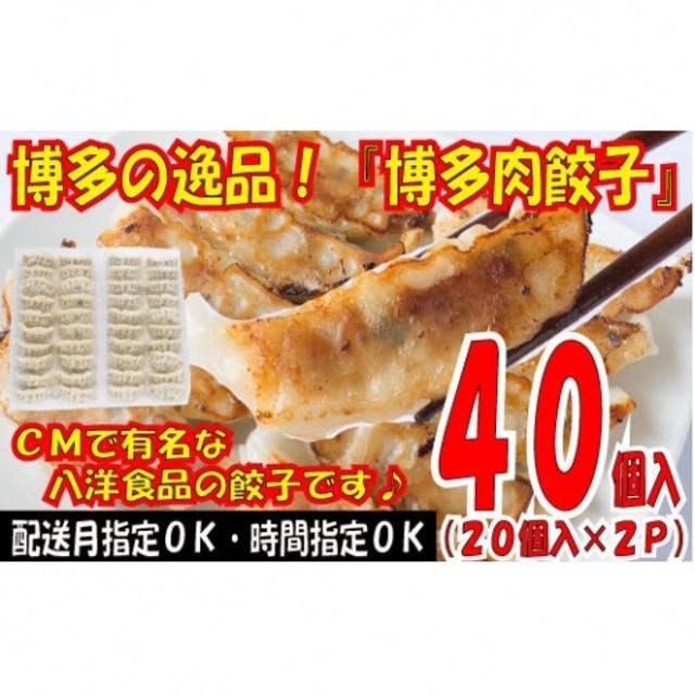 Z114.博多の逸品『博多肉餃子』40個入(20個入×2P)