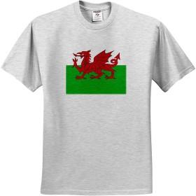 フラッグスウェールズの旗ホワイトとグリーンのウェールズレッドドラゴンY Ddraig GochイギリスイギリスイギリスのTシャツ