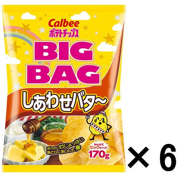 卡樂比Calbee BIG BAG系列 奶油洋芋片 170g 6入裝 A509938