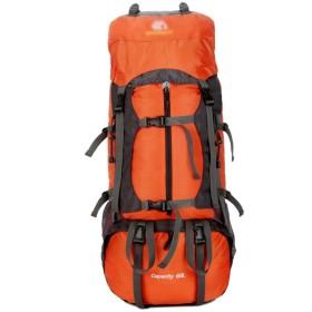 YIYUTING キャンプバックパックアウトドアスポーツバックパックプロフェッショナル登山袋60Lハイキング機能パッケージキャンプバックパック (色 : オレンジ)