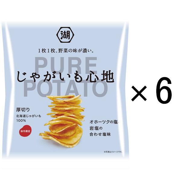 湖池屋 PURE POTATO系列 精選鹽味厚切洋芋片 6袋裝 P072269