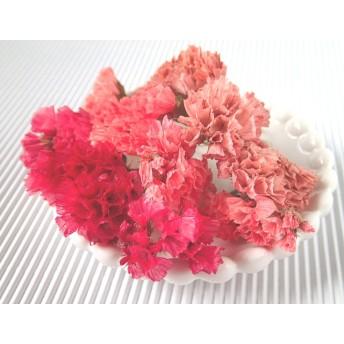 【在庫限り】スターチスのドライフラワー茎つきピンク系MIX