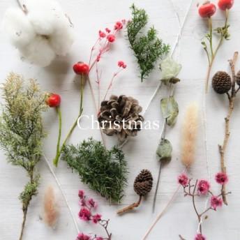 【送料無料 】 クリスマス系花材 ドライフラワー プリザーブドフラワー クリスマス