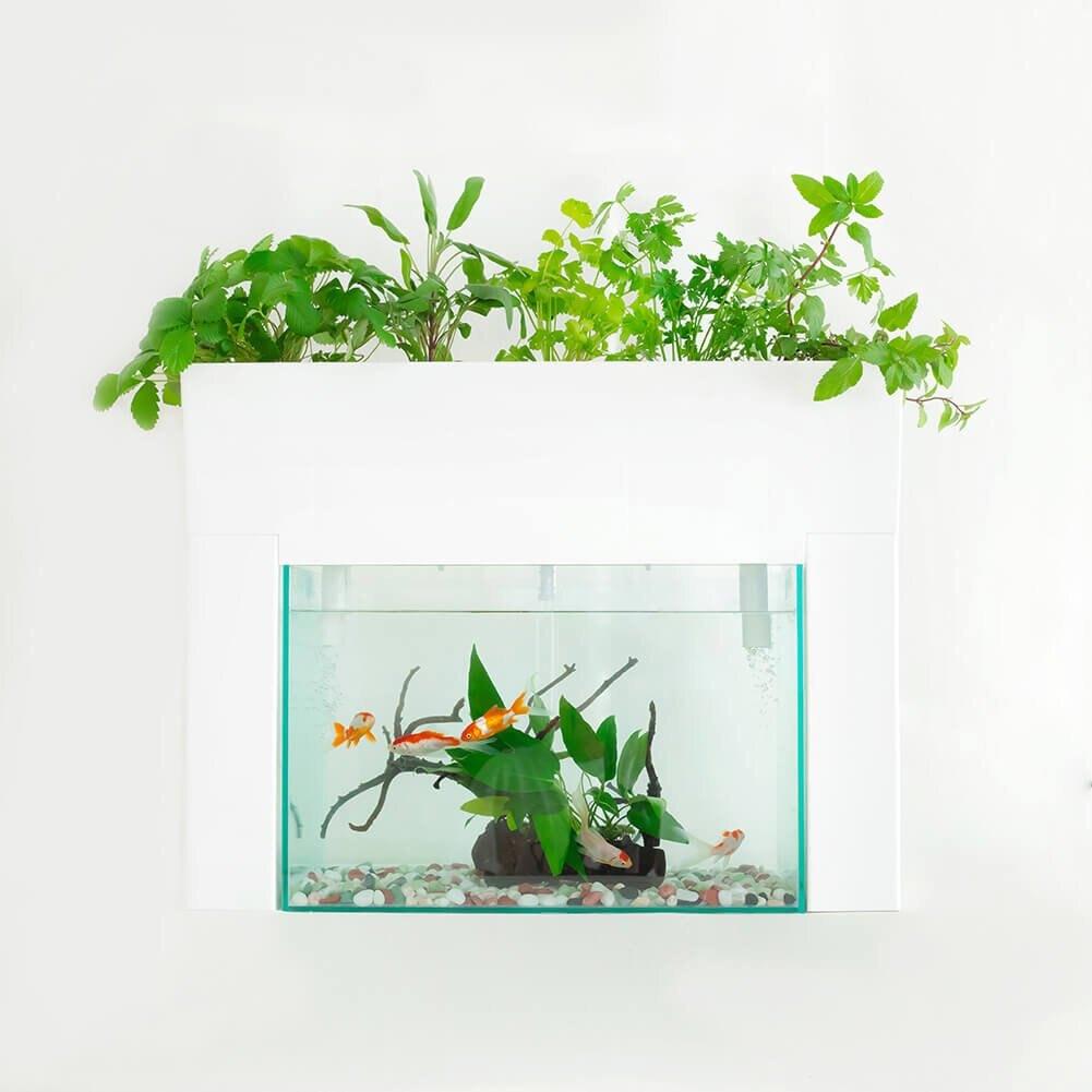 日本製 AQUAPONICS 魚菜共生機 水耕栽培 養耕共生 種菜機 適用45cm魚缸 水族箱家用種菜機 親子同樂 室內盆栽 療癒小物  禮物 日本必買代購