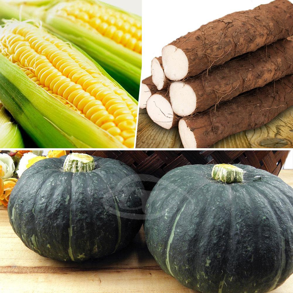鮮採家 小資家庭綜合蔬果箱A組(山藥+栗子南瓜+黃玉米)