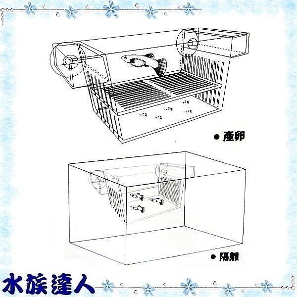 【水族達人】XL《自浮式迷你繁殖箱S.Q-016》隔離箱/產仔箱/產卵盒/產卵箱